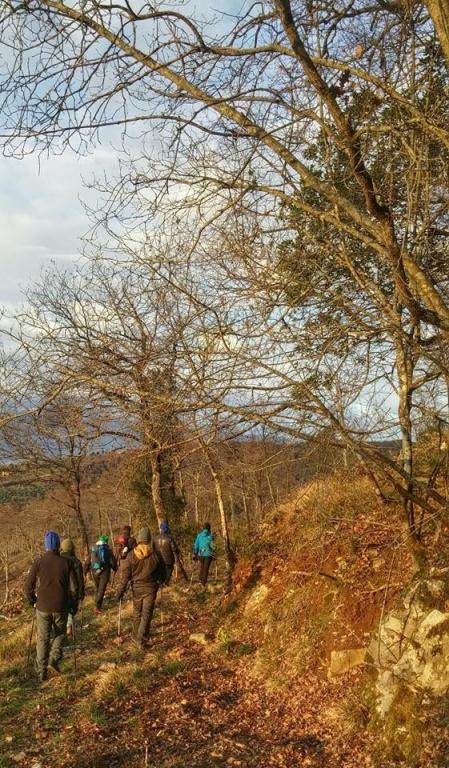 Nei boschi col 2P/B: fra propriocezione e consapevolezza del territorio che ci circonda