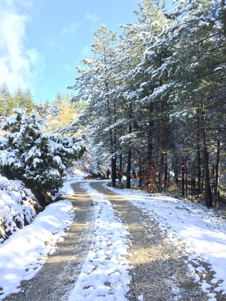 22 Novembre 2015... la prima neve!!! :-)