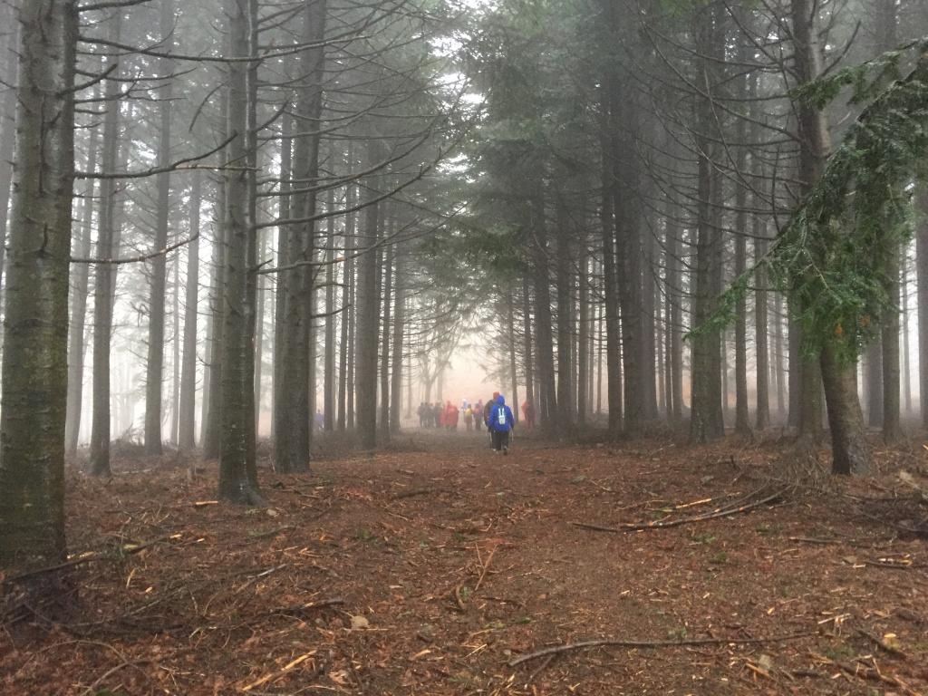 In escursione sul Pratomagno con la nebbia... favoloso!