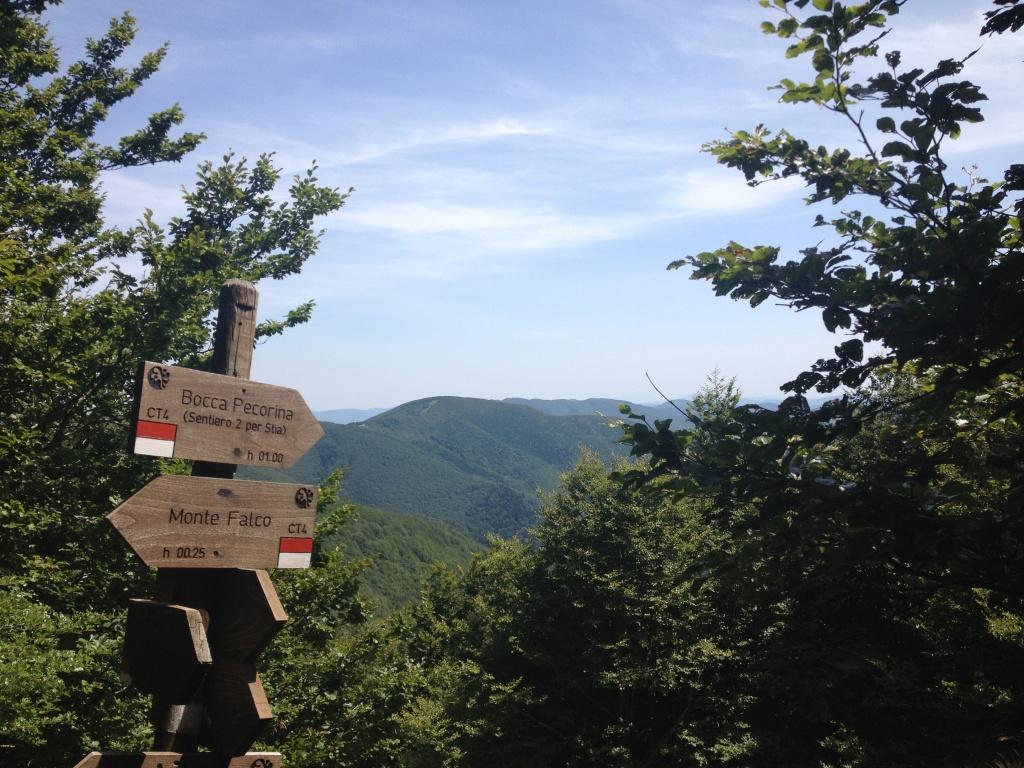 Monte Falterona - Bivio e paesaggio