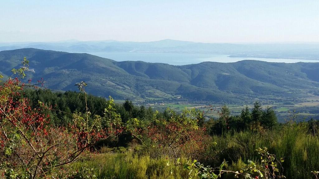 Panorama sul Trasimeno da Monte Castel Giudeo (Cortona)