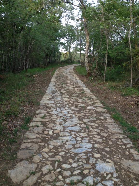 Un recente ritrovamento in Valdambra: la strada romana fra Pieve a Presciano e Montelucci