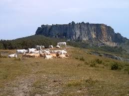 Parco naturale del Sasso di Simone
