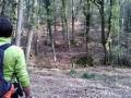 Montozzi (AR) - La tenuta di Montozzi e i suoi boschi secolari