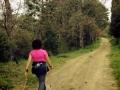 Montebenichi - il crinale fino a Solata