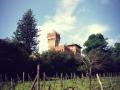 Bucine - Castello di Lupinari