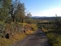 I colli di Tregozzano...