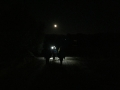 Gli incontri delle 20:00 accompagnati dalla Luna piena...