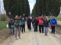 Sul viale cipressato di Villa Arceno!!