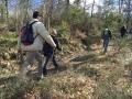 Fra i sentieri dei boschi di Monte San Savino