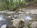 Parco dei Monti Rognosi: il torrente Sovara!!