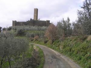 Montecchio-Vesponi-Castiglion-Fiorentino-Arezzo.-Autore-e-Copyright-Marco-Ramerini..2