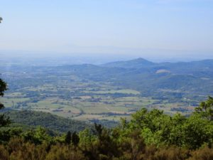 escursione-panorama-passo-al-lupo-pratomagno